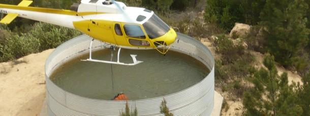 AS350-Agroforestal